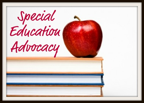 The Role Of Special Education Advocate >> Special Education Advocacy Special Needs Resource