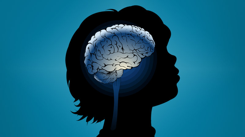 In Developing Brain Scientists Find >> In The Developing Brain Scientists Find Roots Of Neuropsychiatric